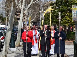 domingo ramos 2016 procesion ramos